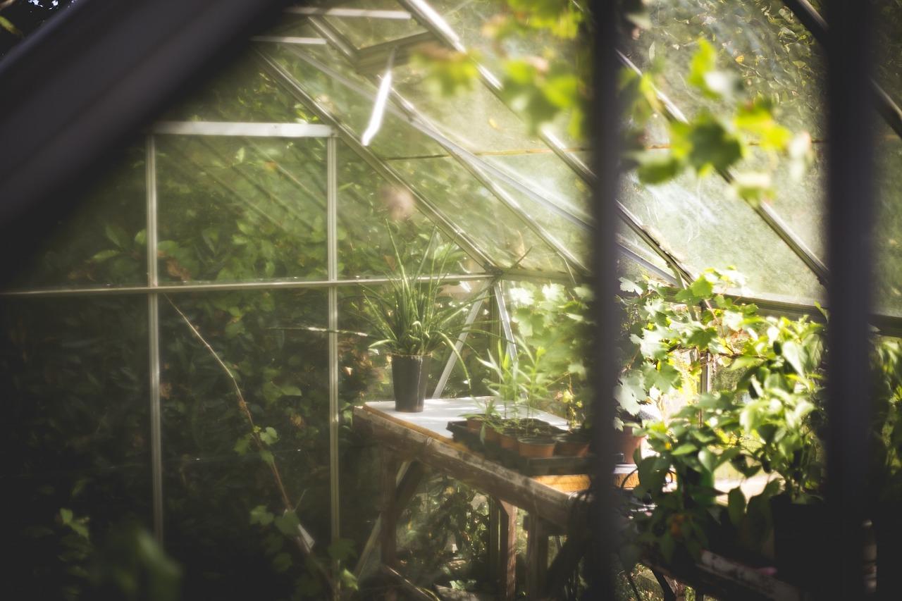 Lån penge nu til et drivhus og nyd haven endnu mere